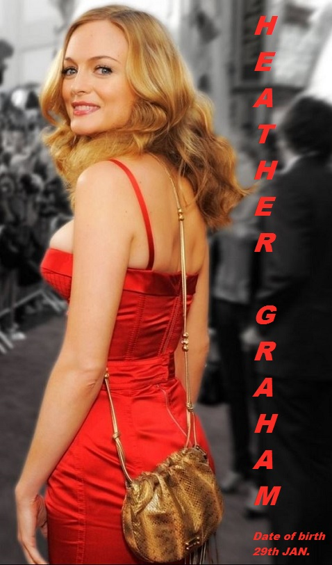 HEATHER GRAHAM -THE HANGOVER PETIT-DIEULOIS