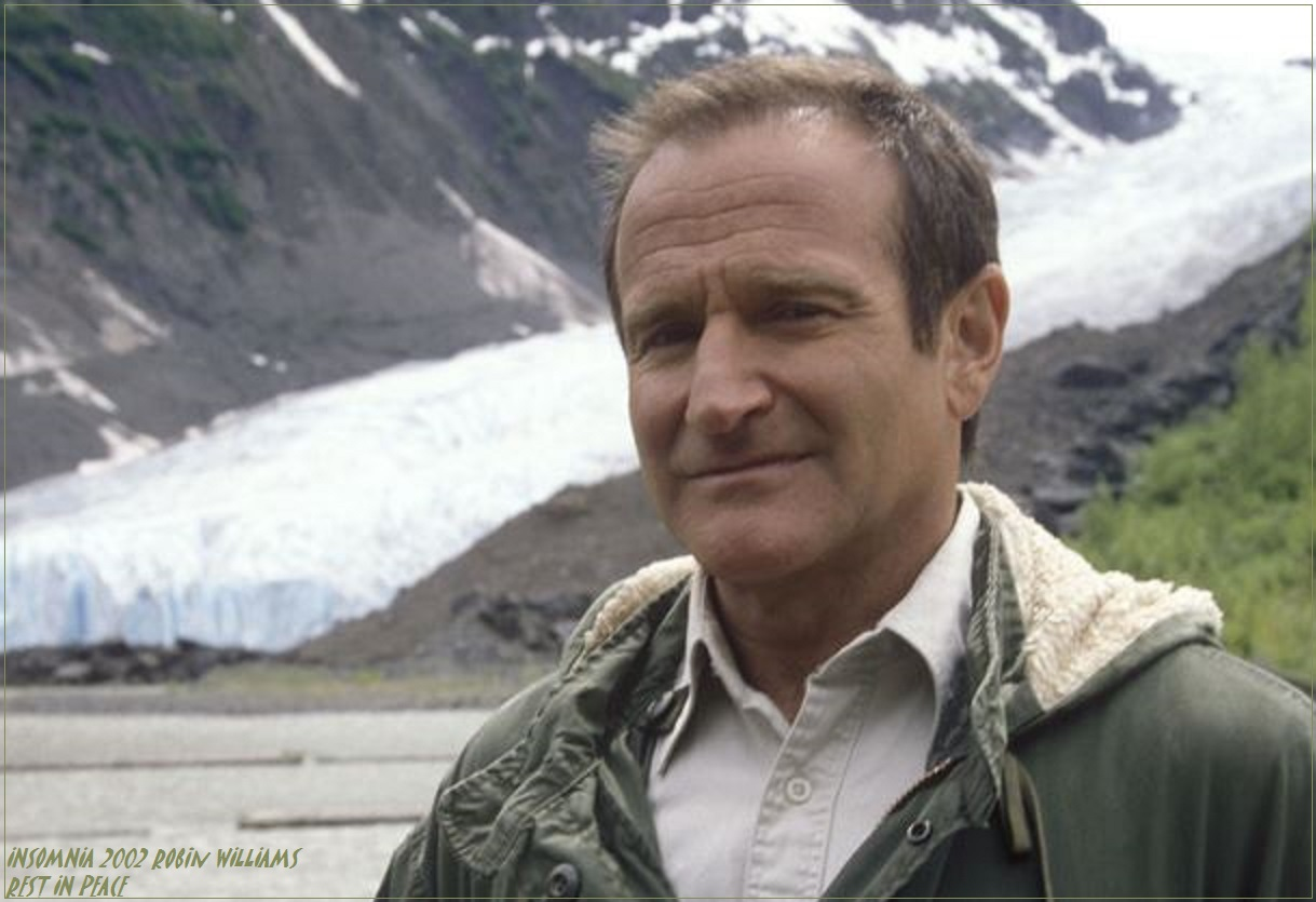 ROBIN WILLIAMS: INSOMNIA PETIT-DIEULOIS